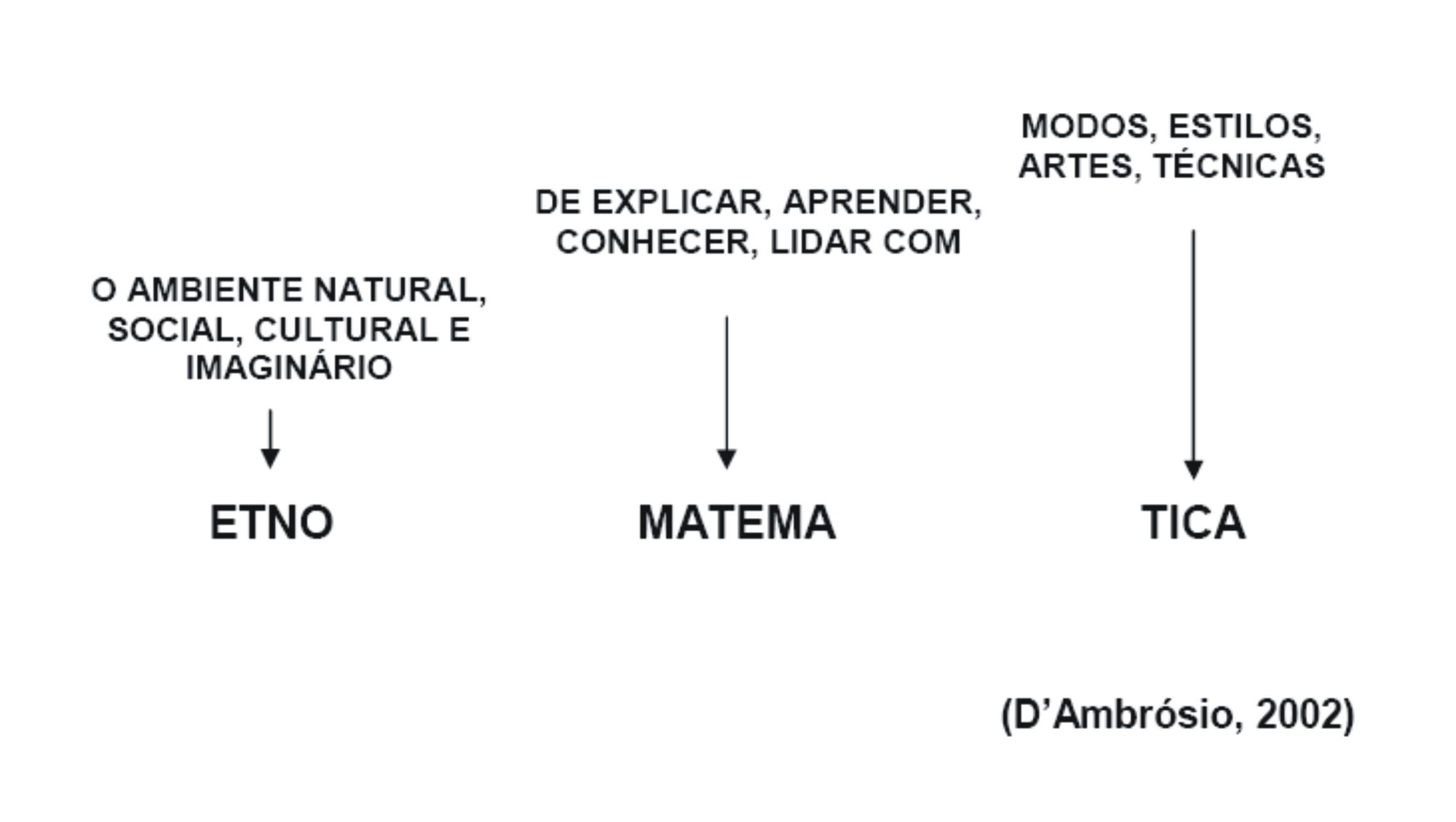 image Programa brasileiro de inclusao digital 1a